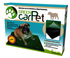 Green Carpet, tapete para perros.